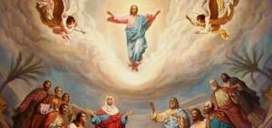 Comentario Dominical: Jesús camina con nosotros