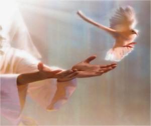 Santísima Trinidad: Dios es vínculo de amor