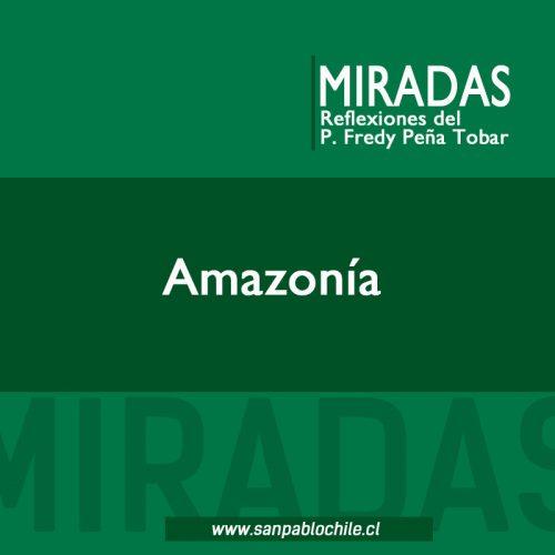 MIRADAS: Amazonía