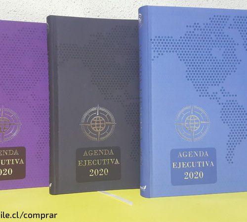 Agendas Ejecutivos para el 2020