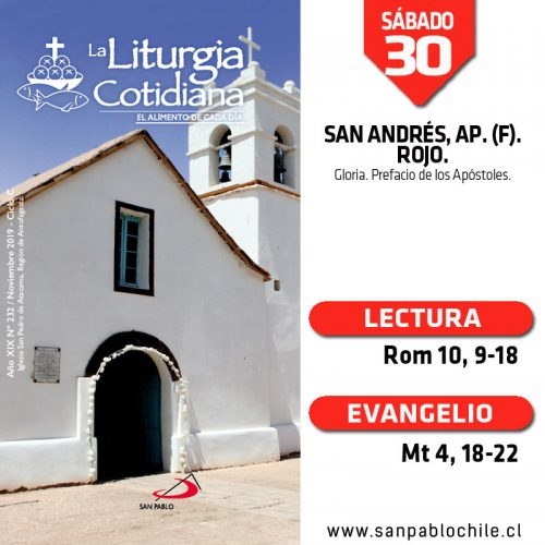 SÁBADO 30: SAN ANDRÉS, ap. (F). Rojo.