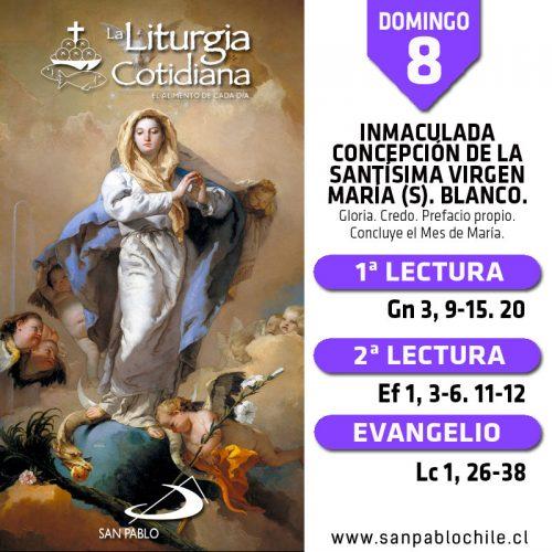 DOMINGO 8: INMACULADA CONCEPCIÓN DE LA SANTÍSIMA VIRGEN MARÍA (S). Blanco.