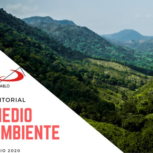 EDITORIAL: Medio Ambiente