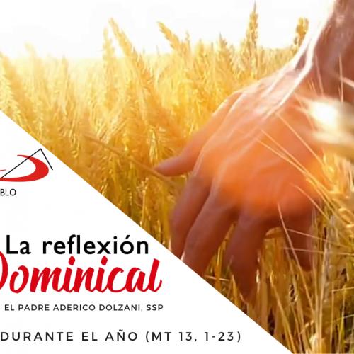 La Reflexión Dominical: 15° durante el año