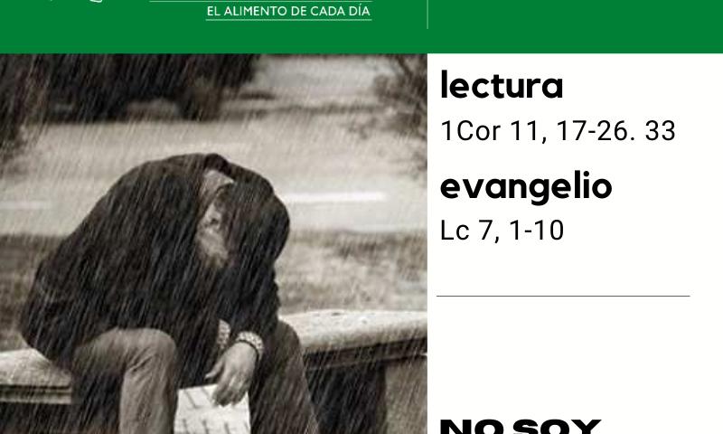 LITURGIA COTIDIANA LUNES 14: De la feria. Verde.
