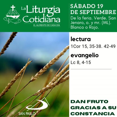 LITURGIA COTIDIANA SÁBADO 19: De la feria. Verde. San Jenaro, o. y mr. (ML). Blanco o Rojo.