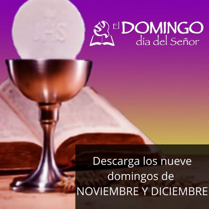 El Domingo DIgital noviembre y diciembre 2020