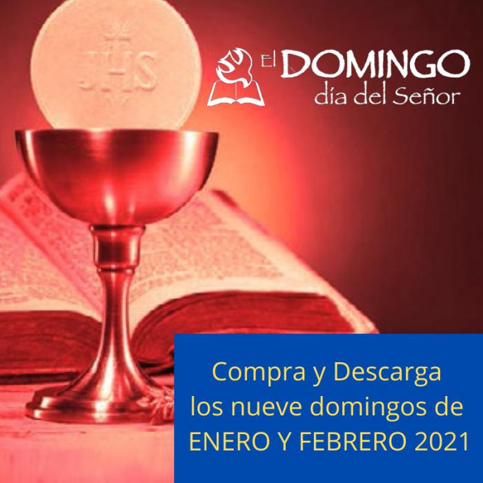El Domingo Digital ENERO y FEBRERO 2021