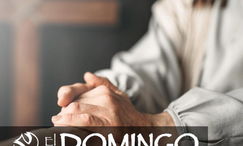 El Domingo, día del Señor: Quinto domingo durante el año