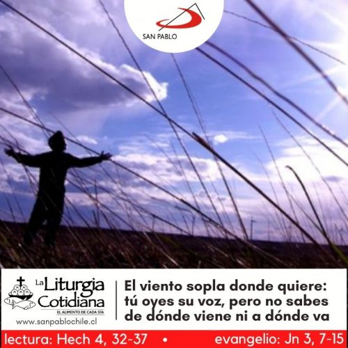 LITURGIA COTIDIANA 13 DE ABRIL: San Martín I, pa. y mr. (ML). Blanco o Rojo.