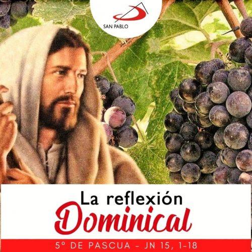 LA REFLEXIÓN DOMINICAL: 2 de mayo de 2021 (5° de Pascua)