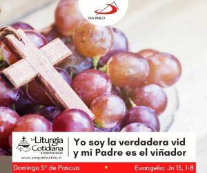LITURGIA COTIDIANA 2 DE MAYO: Domingo 5º de Pascua. Blanco.