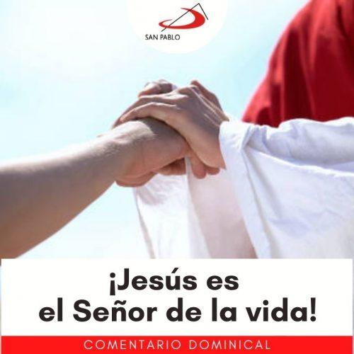 COMENTARIO DOMINICAL: ¡Jesús es el Señor de la Vida!