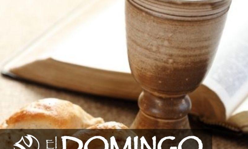 El Domingo, día del Señor: 18º durante el año (1 de agosto de 2021)
