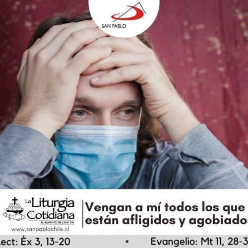 LITURGIA COTIDIANA 15 DE JULIO: San Buenaventura, o. y d. (MO). Blanco.
