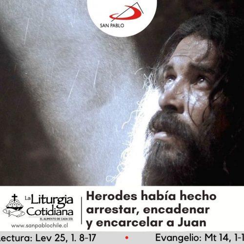 LITURGIA COTIDIANA 31 DE JULIO: San Ignacio de Loyola, p. (MO). Blanco.