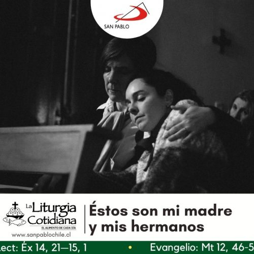 LITURGIA COTIDIANA 20 DE JULIO: De la feria. Verde. San Apolinar, o. y mr. (ML). Blanco o Rojo.