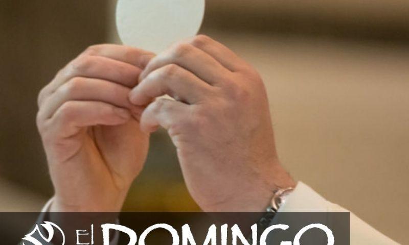 El Domingo, día del Señor: 19° durante el año (8 de agosto de 2021)