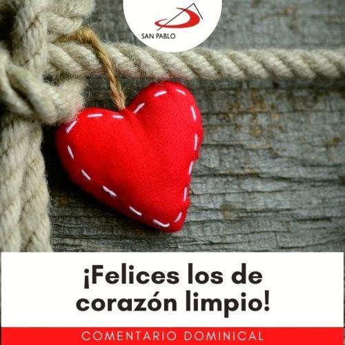 COMENTARIO DOMINICAL: ¡Felices los de corazón limpio!